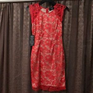AXParis Coral lace dress with cream colored lining